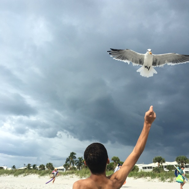 Miguel feeding seagulls on Captiva Island